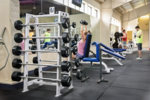 Freeweight Benches